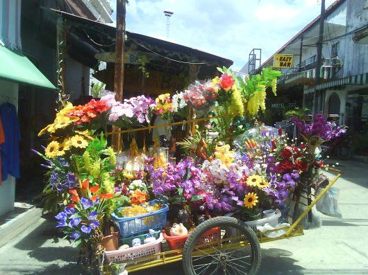 thail laos kamb dec-08 och thailand mars -09 070